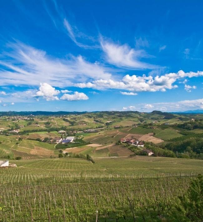 GDP in Piedmont